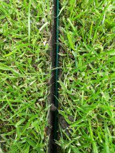 Kabel 3cm unter der Grasnarbe